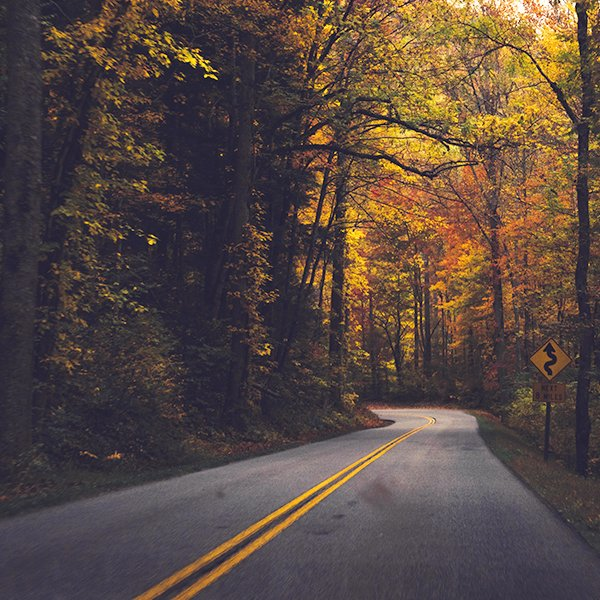 Amenities & Services - Brasstown Manor Driving Service