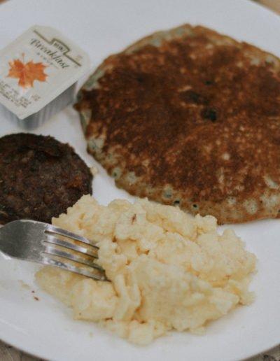 brasstown-manor-food-web-8